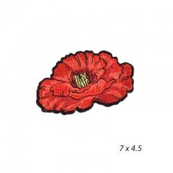 APLIKACJA A/19