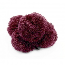 POMPON 80mm 2661 Bordo