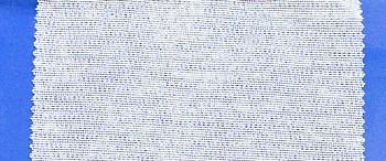 Kamelówka biała